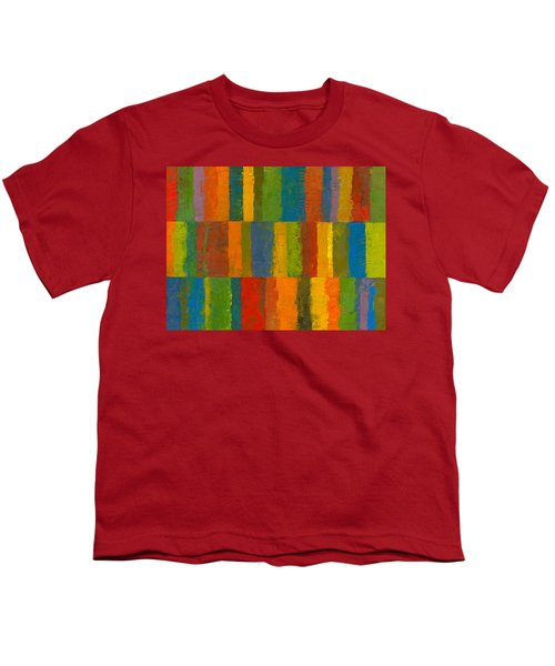 Color Collage With Stripes Youth T-Shirt by Michelle Calkins