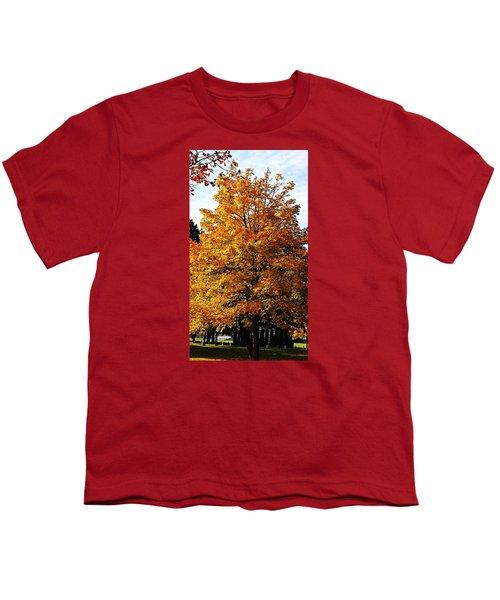 Fallish Yellowish Youth T-Shirt by Jana E Provenzano