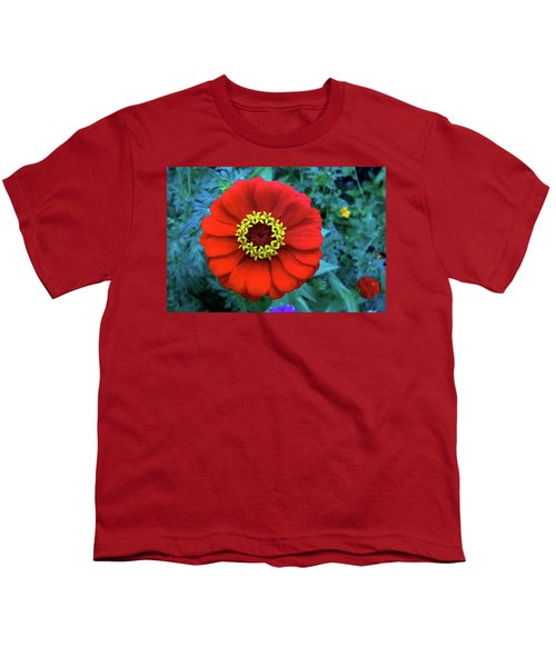 September Red Beauty Youth T-Shirt