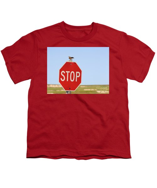 Western Meadowlark Singing On Top Of A Stop Sign Youth T-Shirt by Louise Heusinkveld