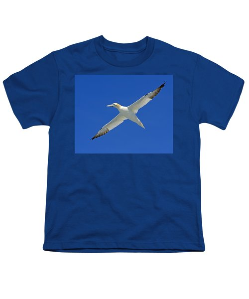 Northern Gannet Youth T-Shirt by Tony Beck