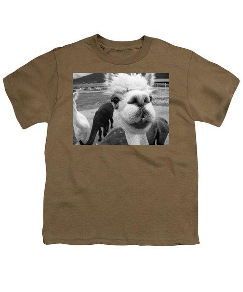 Alpaca Face Youth T-Shirt