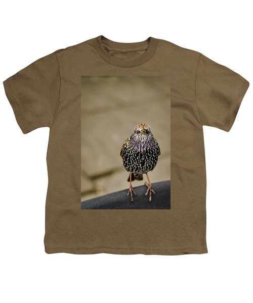Angry Bird Youth T-Shirt by Heather Applegate