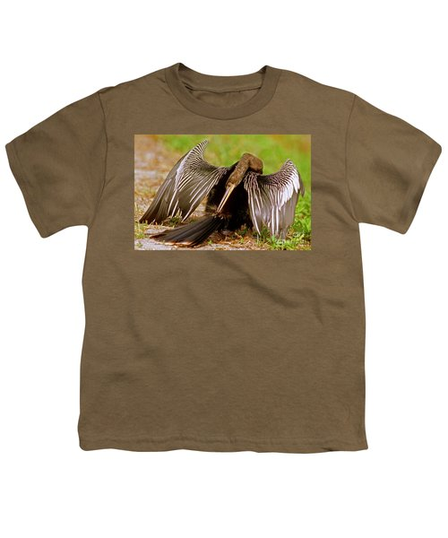 Anhinga Anhinga Anhinga Preening Youth T-Shirt by Millard H. Sharp