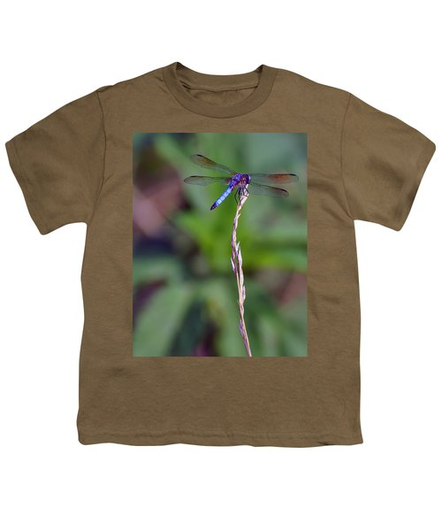 Blue Dragonfly On A Blade Of Grass  Youth T-Shirt