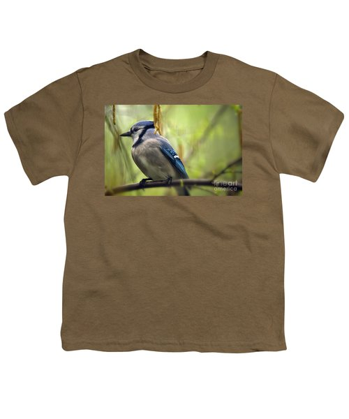Blue Jay On A Misty Spring Day Youth T-Shirt by Lois Bryan