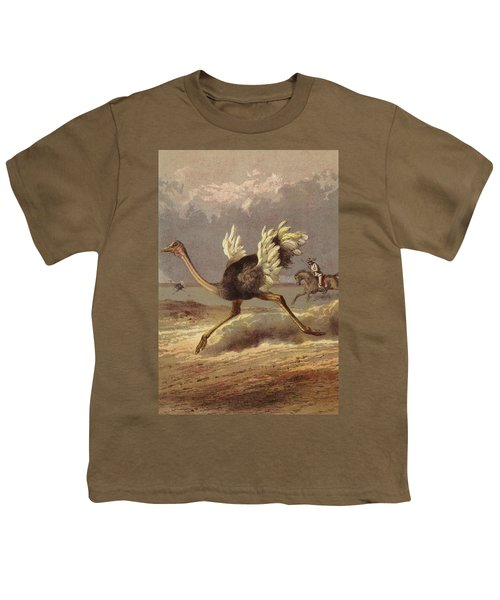 Chasing The Ostrich Youth T-Shirt by English School