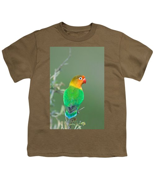 Close-up Of A Fischers Lovebird Youth T-Shirt by Panoramic Images