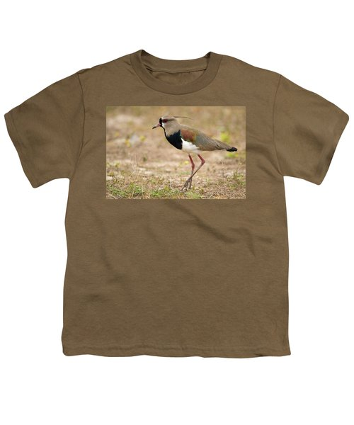 Close-up Of A Southern Lapwing Vanellus Youth T-Shirt by Panoramic Images