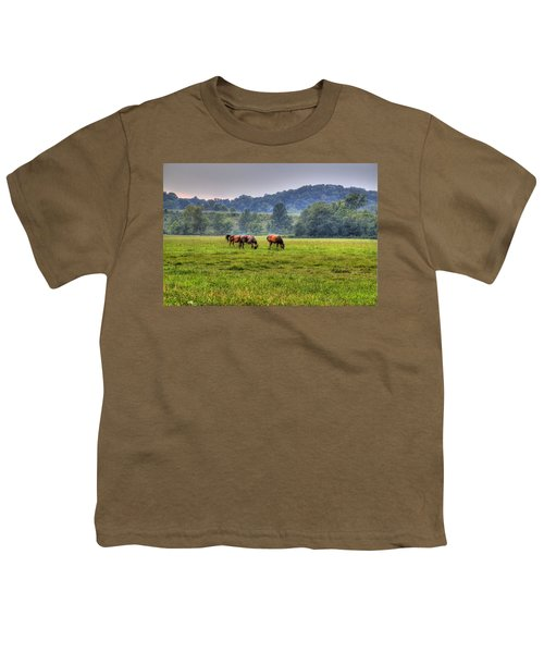 Youth T-Shirt featuring the photograph Horses In A Field 2 by Jonny D