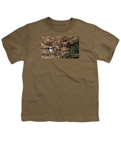 Killdeer Chick Youth T-Shirt by Skip Willits