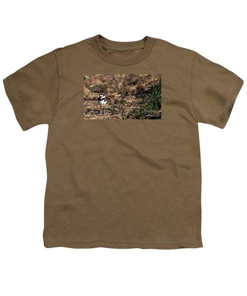 Killdeer Chick Youth T-Shirt
