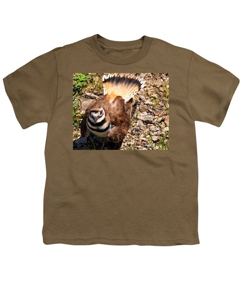 Killdeer On Its Nest Youth T-Shirt