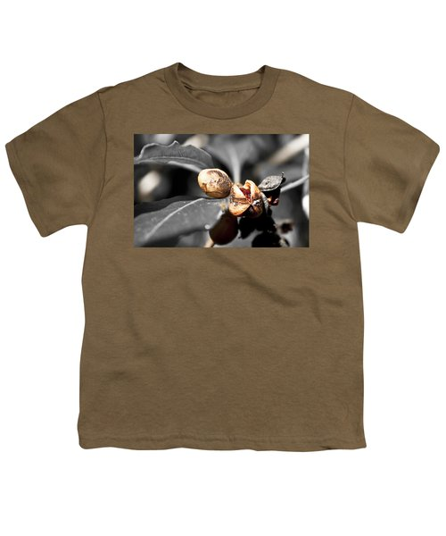 Youth T-Shirt featuring the photograph Knew Seeds Of Complentation by Miroslava Jurcik