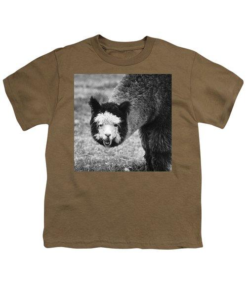 Youth T-Shirt featuring the photograph Llama by Yulia Kazansky