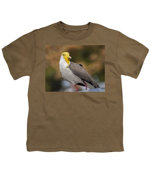 Masked Lapwing Youth T-Shirt by Carolyn Marshall