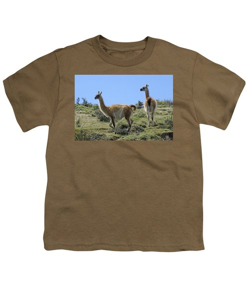 Patagonian Guanacos Youth T-Shirt by Michele Burgess