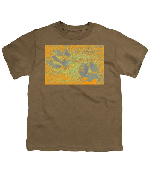 Paw Prints In Orange And Grey Youth T-Shirt
