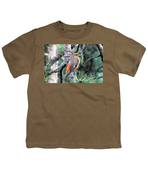 Red Crossbill On Pine Tree Youth T-Shirt by Marilyn Burton