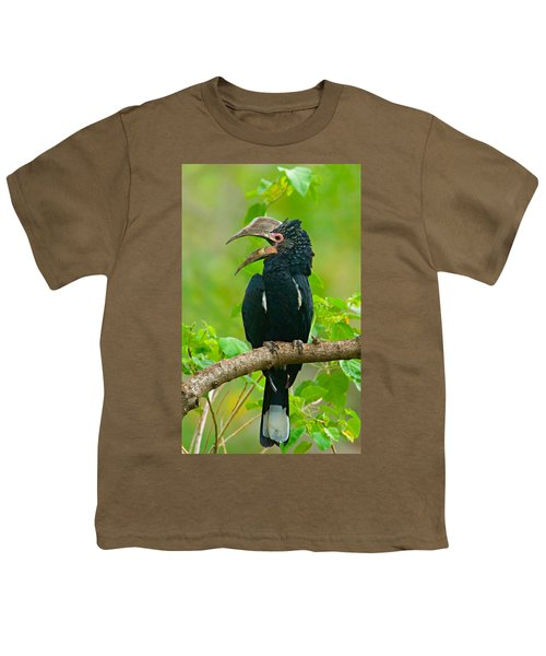 Silvery-cheeked Hornbill Perching Youth T-Shirt