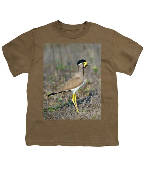 Yellow-wattled Lapwing Vanellus Youth T-Shirt by Panoramic Images