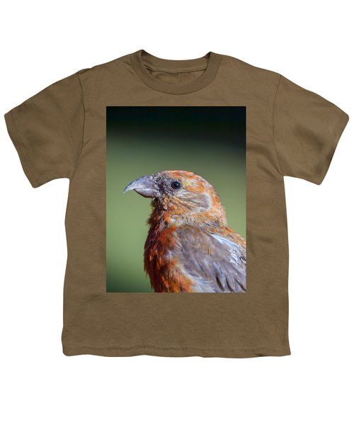 Red Crossbill Youth T-Shirt by Derek Holzapfel