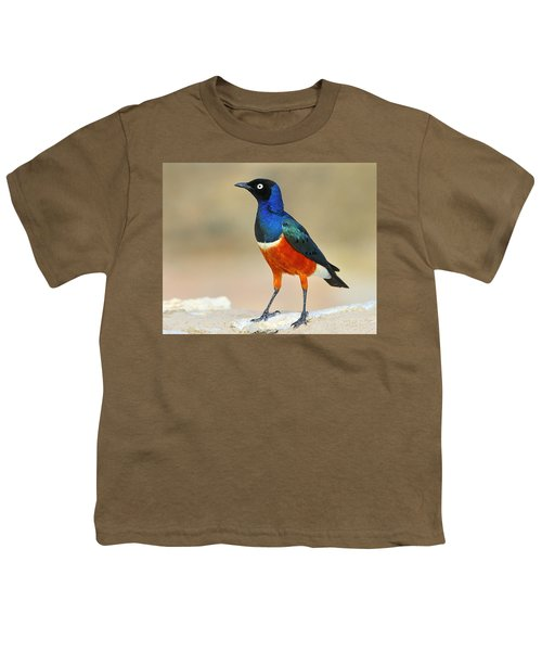 Superb Youth T-Shirt