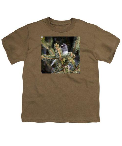 Dark-eyed Junco Youth T-Shirt