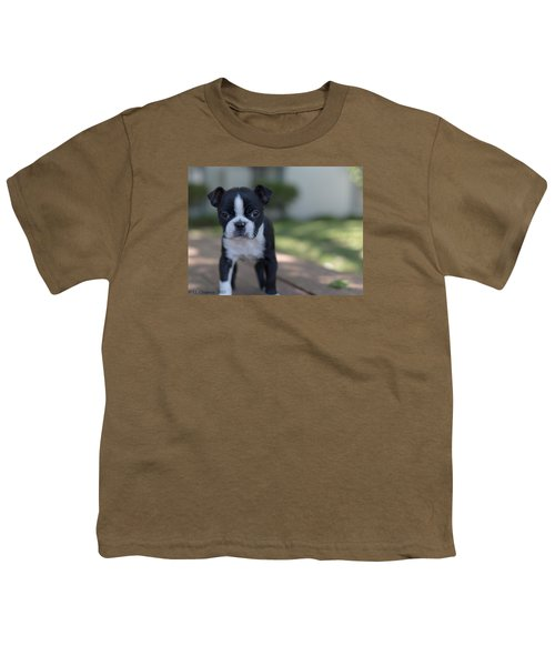 Youth T-Shirt featuring the photograph Harley As A Puppy by Lora Lee Chapman