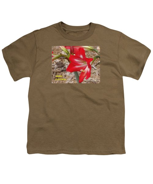 Christmas Card Youth T-Shirt by Rod Ismay