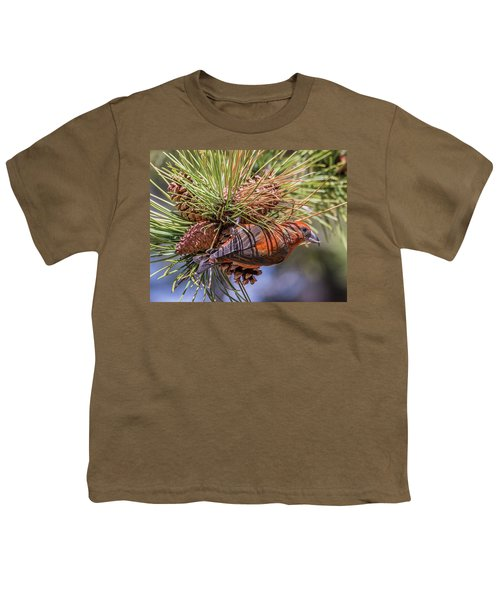 Red Crossbill Youth T-Shirt by Michael Cunningham