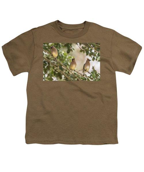 3 Cedar Waxwings  Youth T-Shirt