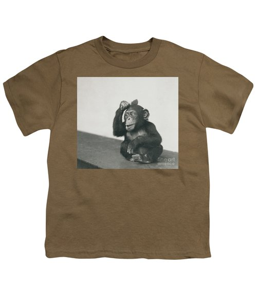 A Young Chimpanzee Playing With A Brush Youth T-Shirt
