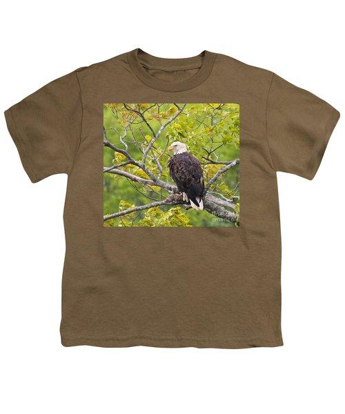 Adult Bald Eagle Youth T-Shirt