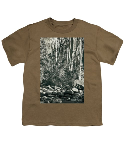 Youth T-Shirt featuring the photograph All Was Tranquil by Linda Lees