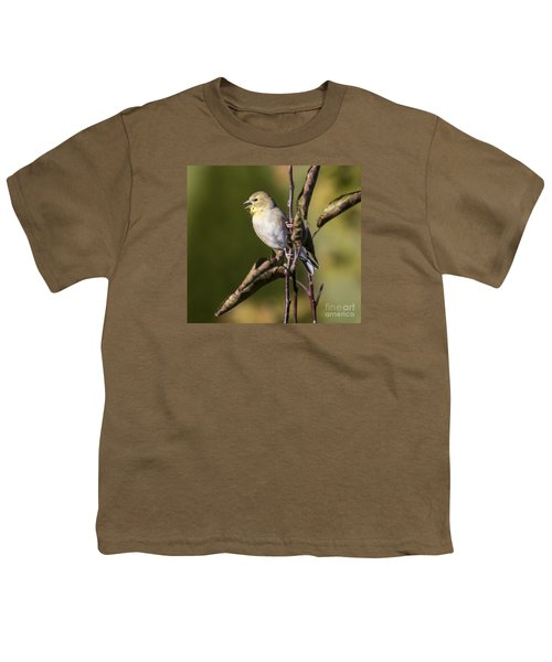 Youth T-Shirt featuring the photograph American Goldfinch In Fall Colors  by Ricky L Jones
