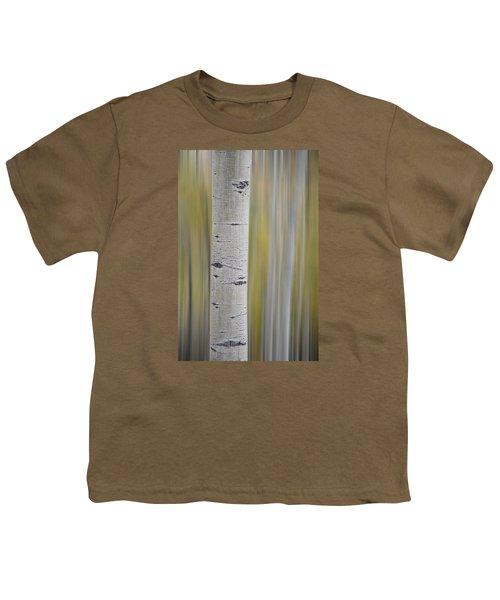Aspen Youth T-Shirt by Gary Lengyel