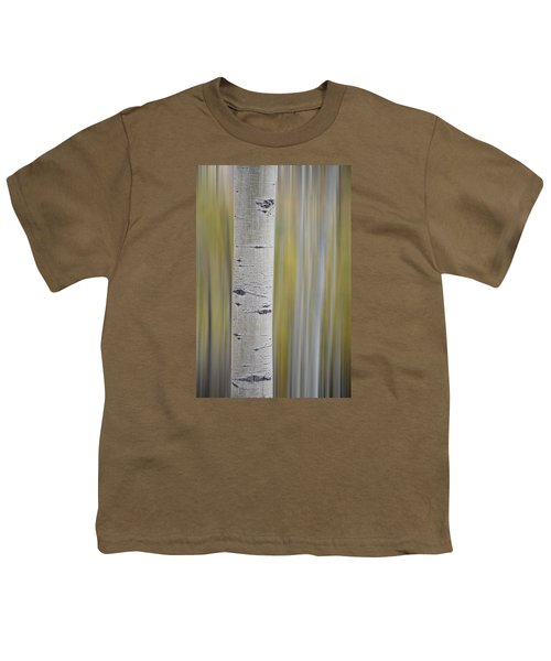 Aspen Youth T-Shirt