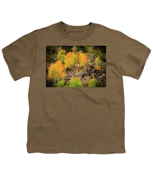 Autumn In The Uinta Mountains Youth T-Shirt