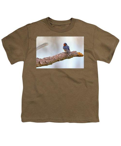 Barn Swallow On Assateague Island Youth T-Shirt by Rick Berk