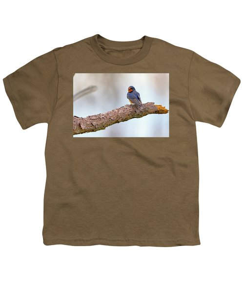 Barn Swallow On Assateague Island Youth T-Shirt