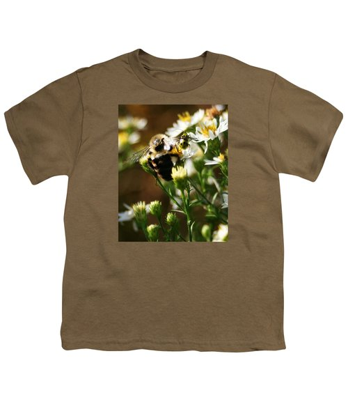 Bee And Spotted Cucumber Beetle On Aster Youth T-Shirt