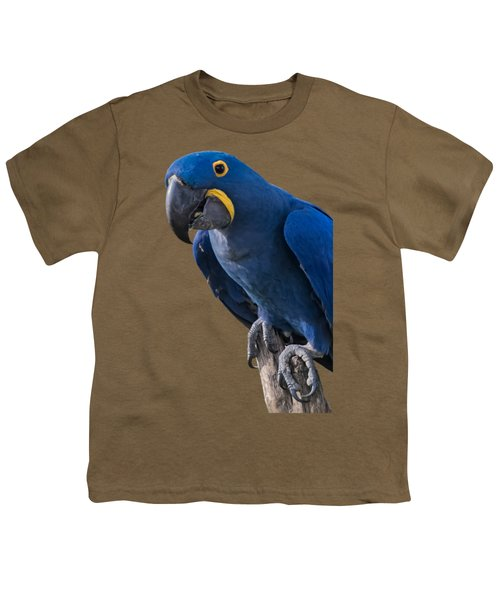 Blue Macaw Youth T-Shirt by Mark Myhaver