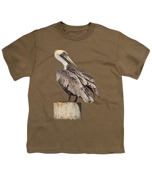 Brown Pelican - Preening - Transparent Youth T-Shirt