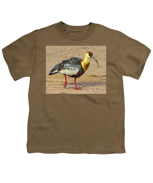 Buff-necked Ibis Youth T-Shirt