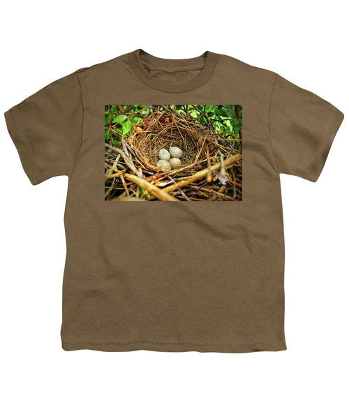 Brown Thrasher Nest And Eggs Youth T-Shirt by Bellesouth Studio