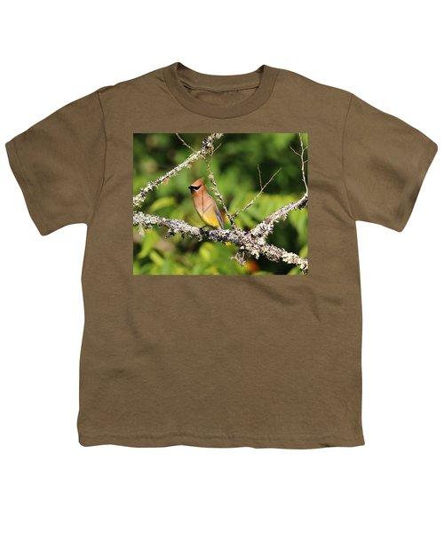 Cedar Waxwing  Youth T-Shirt by Carol R Montoya
