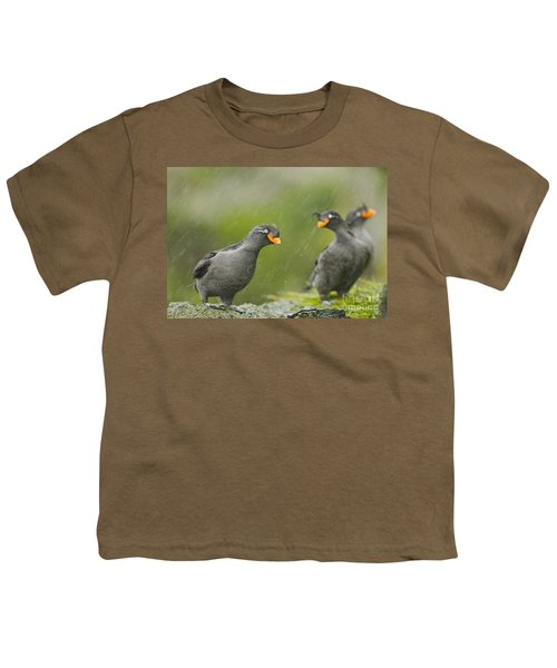 Crested Auklets Youth T-Shirt
