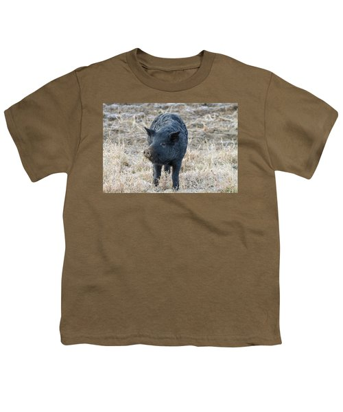 Youth T-Shirt featuring the photograph Cute Black Pig by James BO Insogna