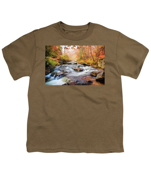 Fall Morning At Gunstock Brook Youth T-Shirt